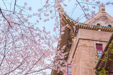 Kinh nghiệm du lịch Vũ Hán - Chicago phương Đông