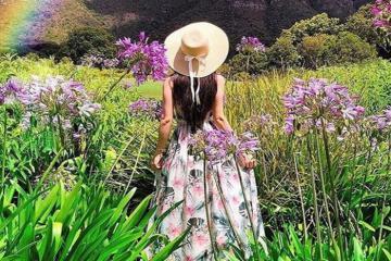 'Đi lạc' ở vườn bách thảo quốc gia Kirstenbosch Nam Phi đầy màu sắc