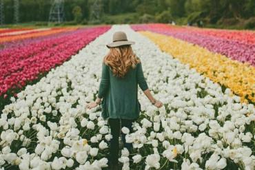 Ngắm nhìn vườn hoa Keukenhof rực rỡ khoe sắc năm 2020