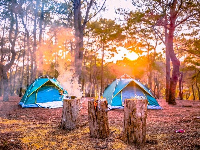 Đồi thông Hà Tam địa điểm cắm trại ở Gia Lai