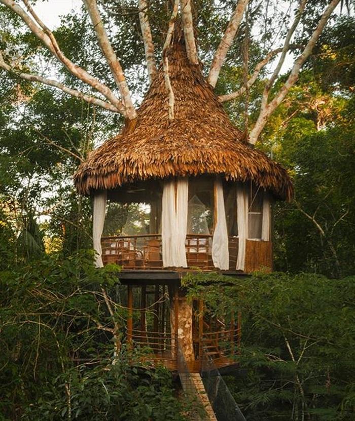 Khu nghỉ dưỡng Treehouse Lodge - Khách sạn độc đáo nhất thế giới