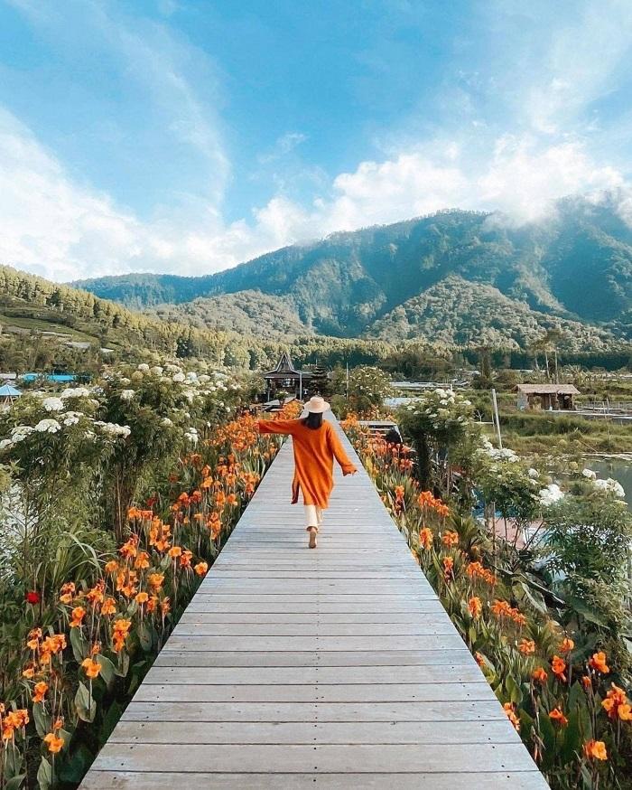 bedugul - Cách lựa chọn khu vực lưu trú tại Bali
