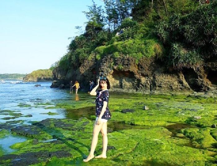 mùa rêu - thời điểm checkin đẹp tại Biển Lệ Thủy