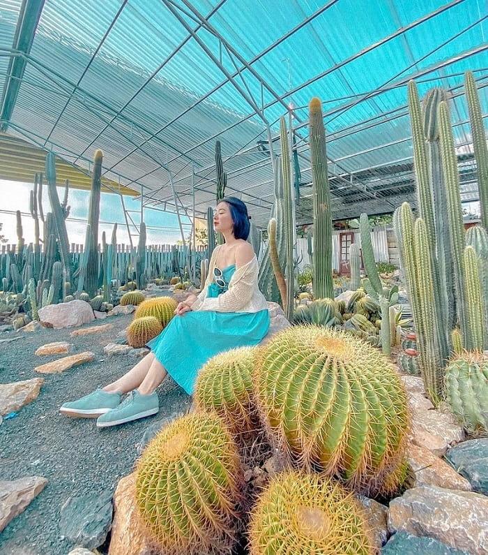 Check in vườn xương rồng Cactizone
