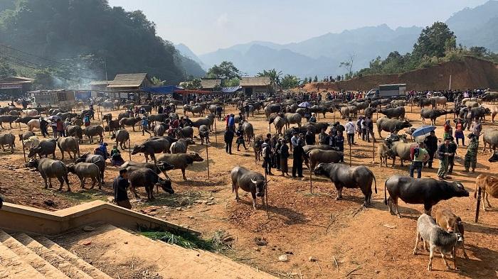 Coc Ly Market - Fair market in Lao Cai