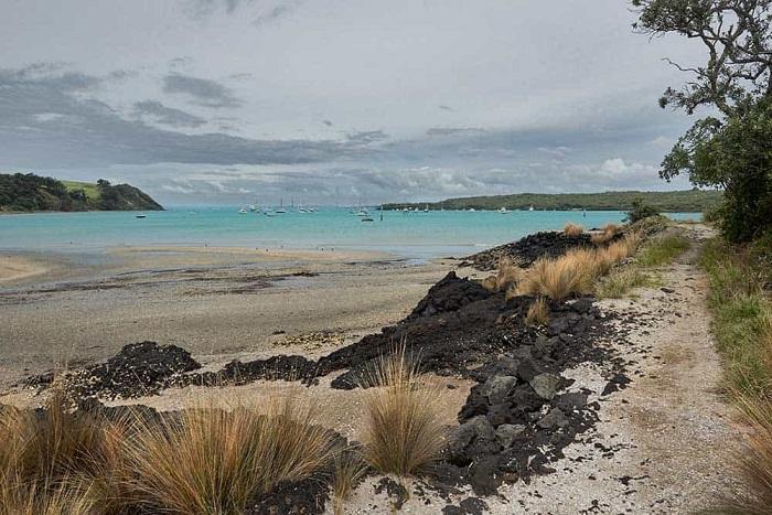 Bãi biển có thể bơi ở gần Yankee Wharf - Hướng dẫn du lịch đảo Rangitoto ở New Zealand