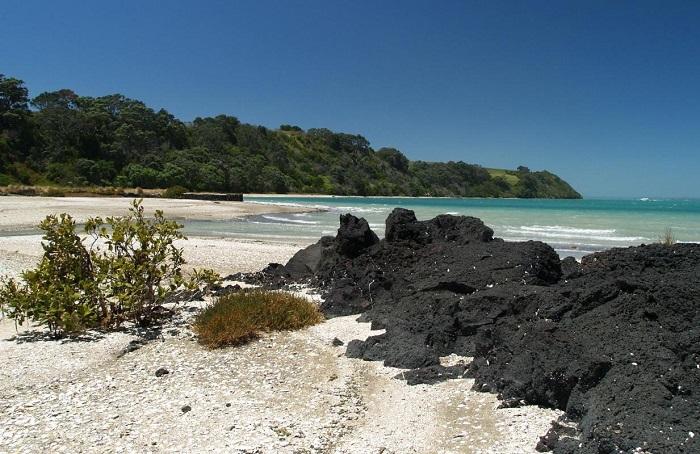 Một bãi biển trên đảo Rangitoto