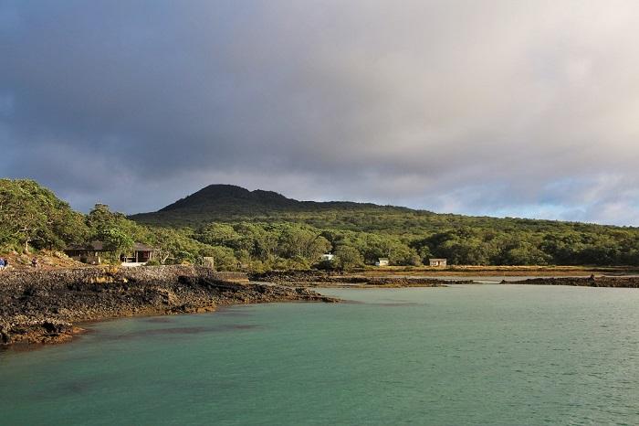 Một chuyến đi bộ trên đảo là cơ hội để khám phá ngọn núi lửa trẻ nhất New Zealand - Hướng dẫn du lịch đảo Rangitoto ở New Zealand