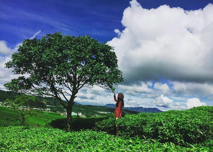 'Chốt hạ' 1 trong 10 địa điểm du lịch 30/4 gần Hà Nội bao rẻ, bao đẹp