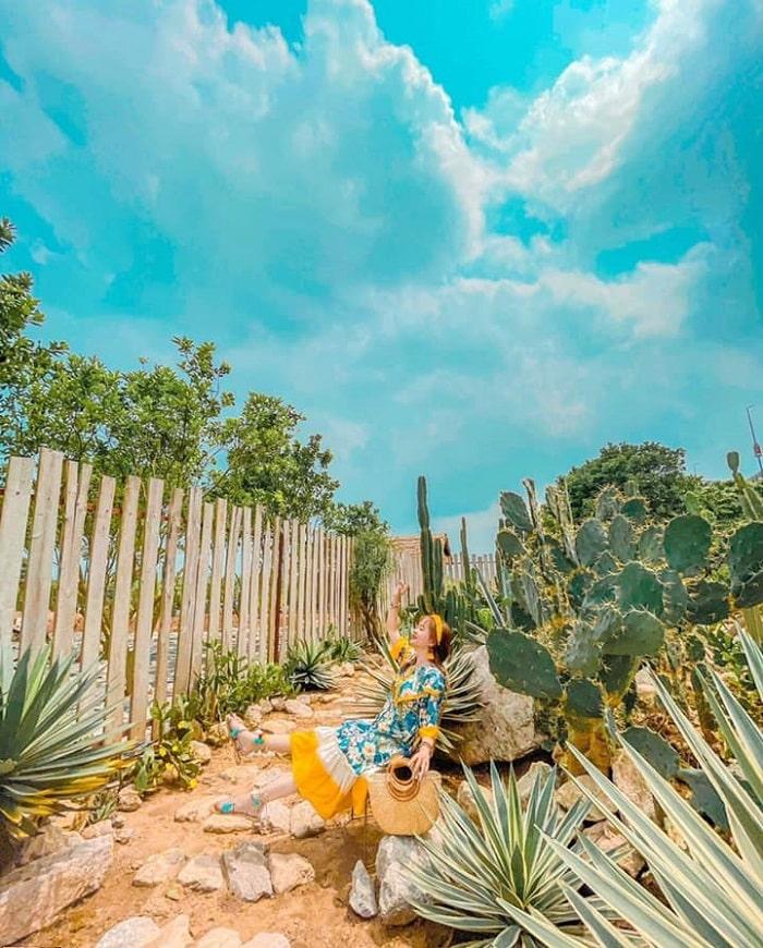 Đôi nét về vườn xương rồng Cactizone