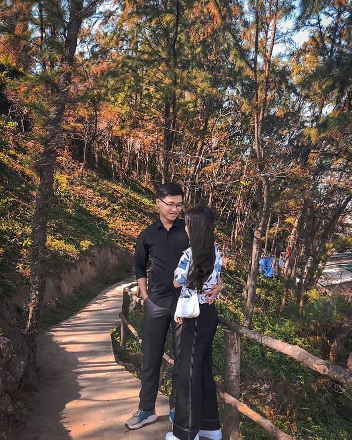 đồi thông - điểm sống ảo đẹp tại Vịnh Dung Quất