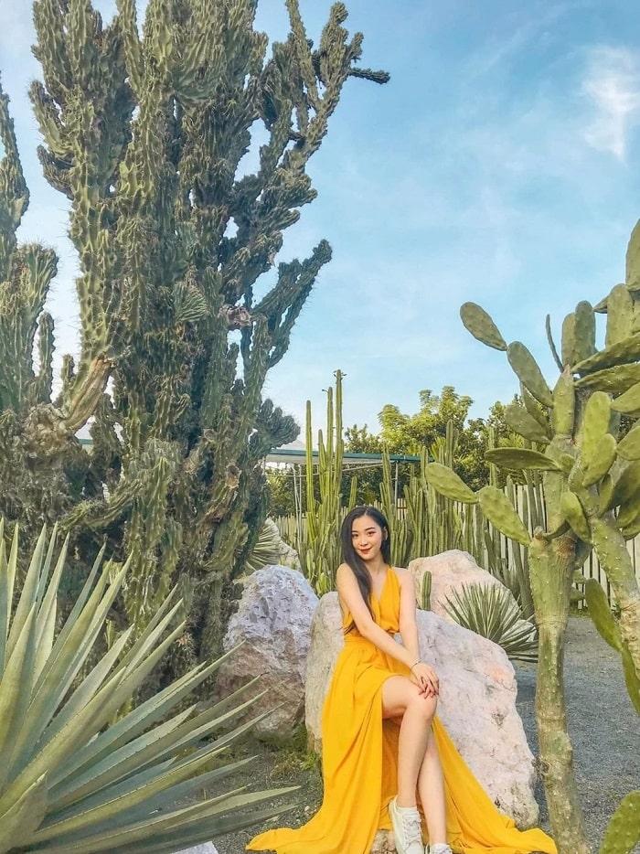 Du lịch Vườn xương rồng Cactizone