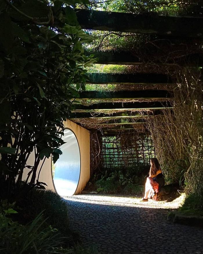 Vườn chiêm ngưỡng Nhật Bản - Tham quan vườn Hamilton