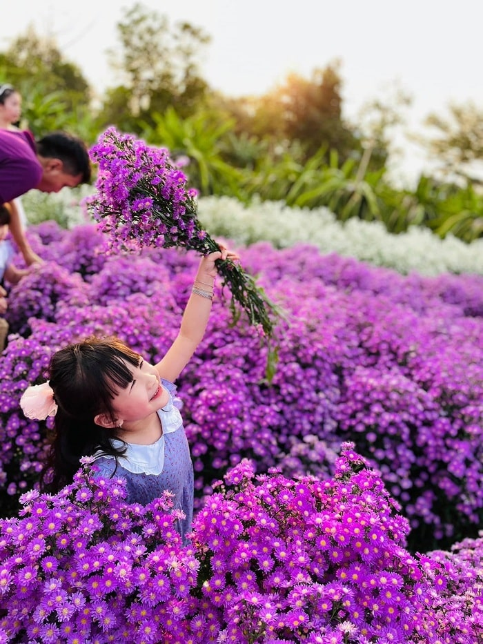Sunny day - a good time to take pictures with the heather garden in Buon Ma Thuot