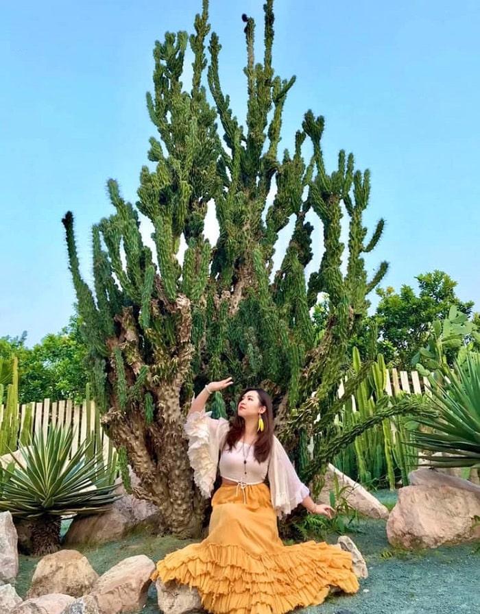 Kinh nghiệm sống ảo ở vườn xương rồng Cactizone