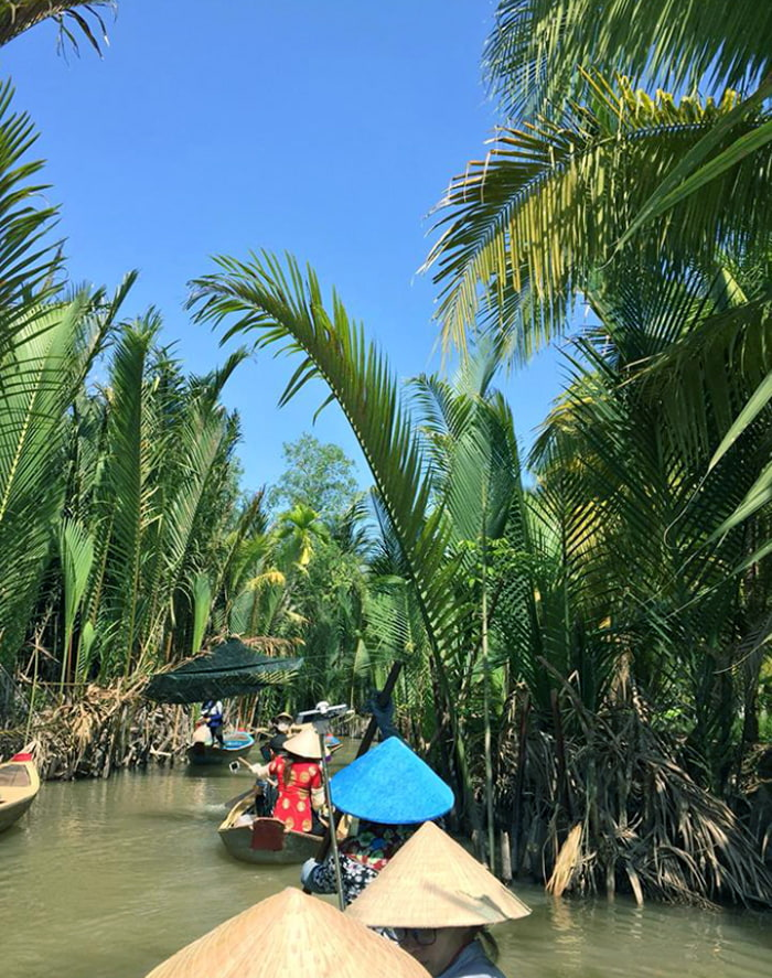 Check in Quy Ben Tre alcohol - See the trees
