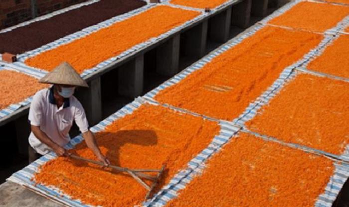 làm muối ớt tôm -  làng nghề ở Tây Ninh độc đáo