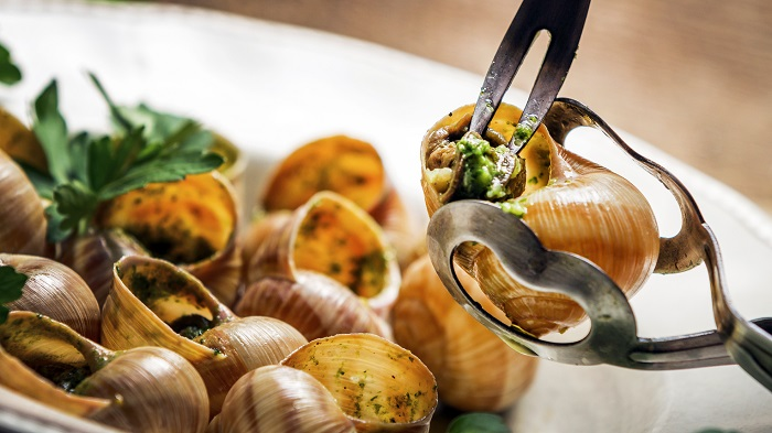 Snail dish in France - Typical French cuisine