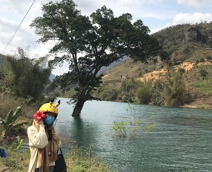 cây cổ thụ giữa sông Gâm Cao Bằng