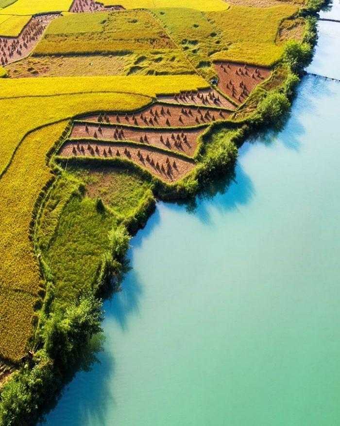 mùa lúa chín - thời điểm nên đến sông Quây Sơn