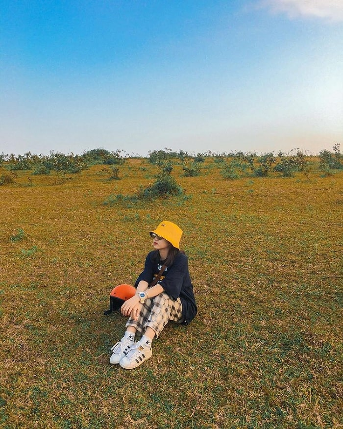 cỏ xanh - điểm nhấn tại thảo nguyên Bùi Hui