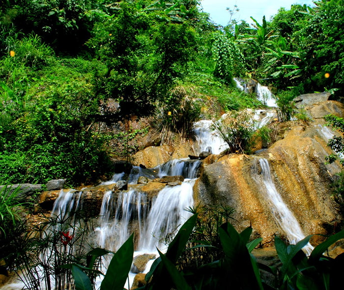Find Mo Hue Waterfall - Lush nature