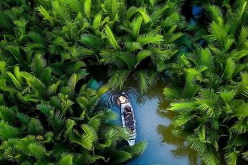 Có một rừng dừa nước ở Quảng Ngãi đẹp như họa, bạn đã đến chưa?