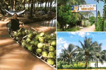 Cù Lao Tân Lộc - 'hòn đảo ngọt' giữa lòng Tây Đô