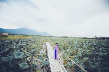 Góc 'sống ảo' xịn sò ở Phú Thọ gọi tên đầm sen Bạch Thủy