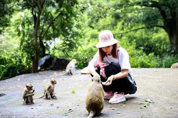 Đảo Khỉ Cát Bà có gì mà từ khách Việt cho đến khách Tây đều 'say như điếu đổ'?