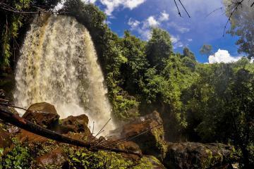Khám phá thác Voi Bù Đăng Bình Phước hoang sơ đầy cuốn hút