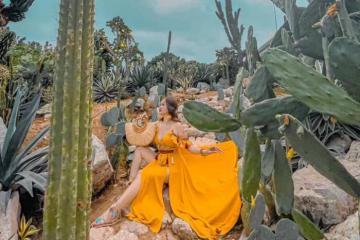 1001 góc 'sống ảo' siêu xinh tại vườn xương rồng Cactizone Hà Nội