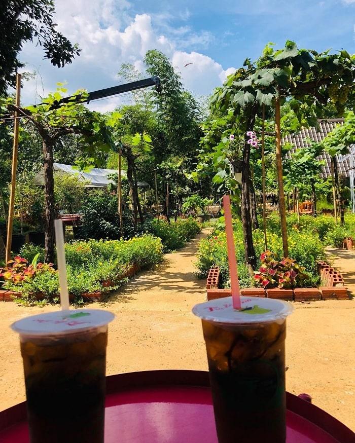 uống trà - hoạt động thú vị tại vườn nho Long Khánh Đồng Nai