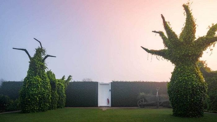 cây khổng lồ chuyển động cơ học - Tham quan vườn Hamilton