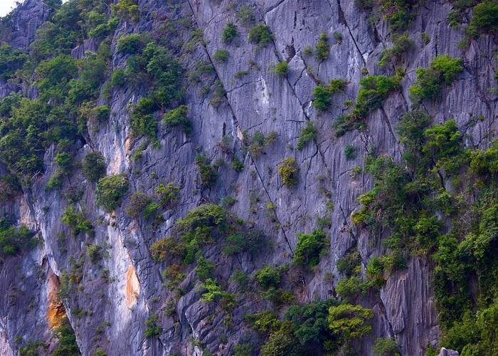Bai Tu Long National Park - beautiful nature in Van Don