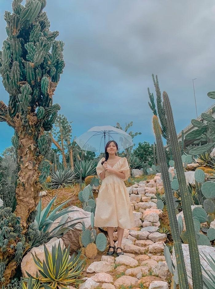 Vườn xương rồng Cactizone