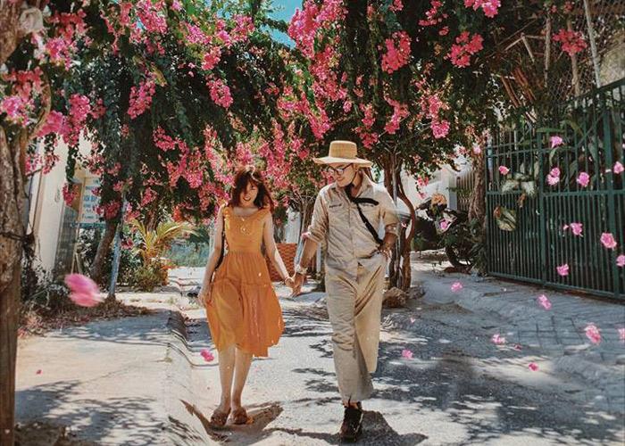 Con đường hoa giấy đẹp nhất Nha Trang 11