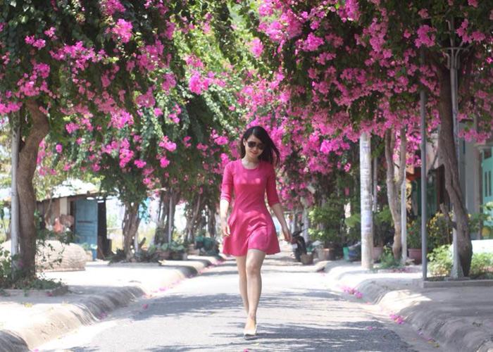 Con đường hoa giấy đẹp nhất Nha Trang 5