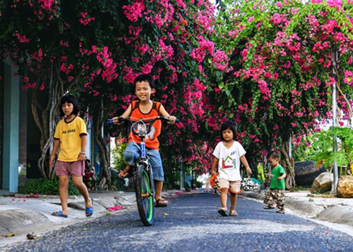 Con đường hoa giấy đẹp nhất Nha Trang 9