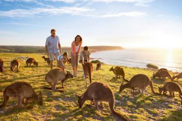 7 yếu tố quyết định bạn có hợp để đi du lịch Úc hay không?