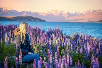 7 điểm đến của du lịch New Zealand, bạn đã tới được những đâu?