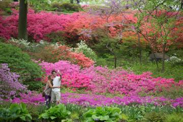 6 điểm đến lãng mạn cho cặp đôi tại thành phố New York Mỹ