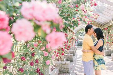 Du lịch Portland - khám phá vẻ đẹp quyến rũ của xứ sở hoa hồng