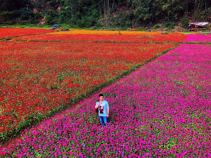 thung-lung-hoa-bac-son-minkinh nghiệm du lịch Lạng Sơn đầy đủ và chi tiết