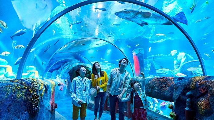 Thủy cung Sea Life - công viên Legoland Malaysia