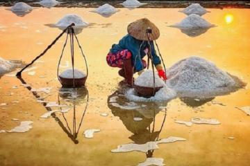Cánh đồng muối Bạch Long - hiện thân của những diêm dân 'cõng nắng'