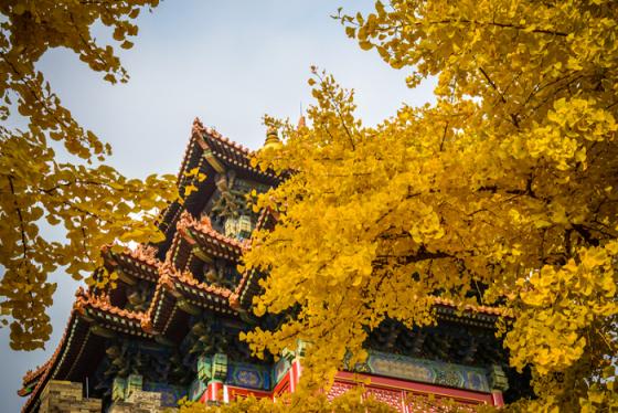 Check-in 7 địa điểm cổ kính bậc nhất tại Bắc Kinh