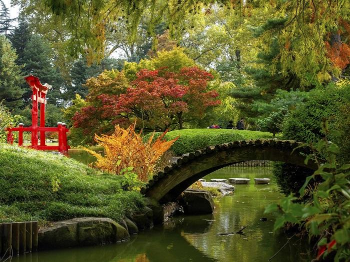 Vườn Nhật Bản ở Brooklyn Botanic aGarden - Vườn bách thảo đẹp nhất thế giới