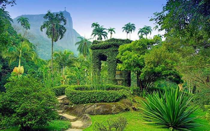 Khu vườn Jardim Botânico - Vườn bách thảo đẹp nhất thế giới