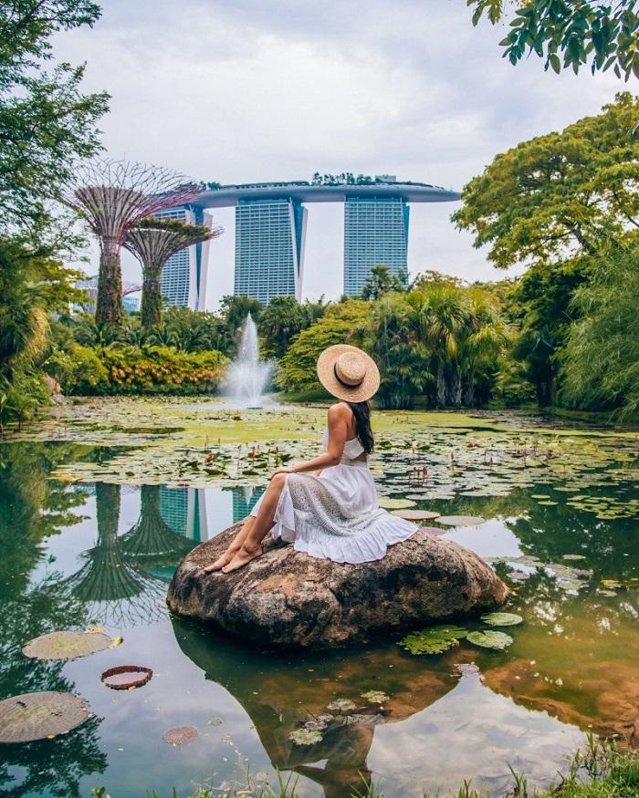 Đây là một trong những điểm du lịch nổi tiếng ở Singapore - Vườn bách thảo đẹp nhất thế giới